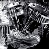Training Shovelhead Harley