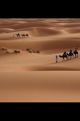 Discover Algeria - screenshot