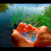 Как выжить без воды 3D книга