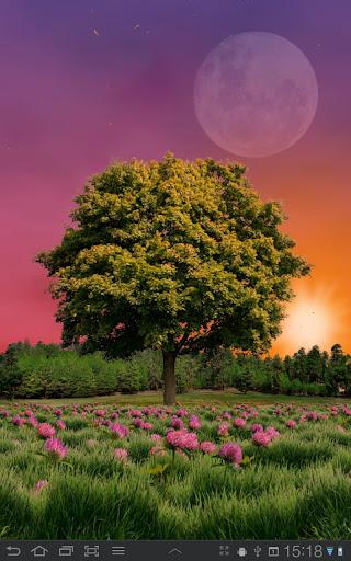 تحميل خلفية Summer Trees Live