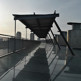glass centre  by Gav Wyatt - Buildings & Architecture Other Exteriors ( roof )