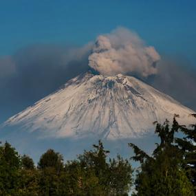 Smoking volcano and trees by Cristobal Garciaferro Rubio - Landscapes Mountains & Hills ( volcano, popo, mexico, popocatepetl, smoking volcano )