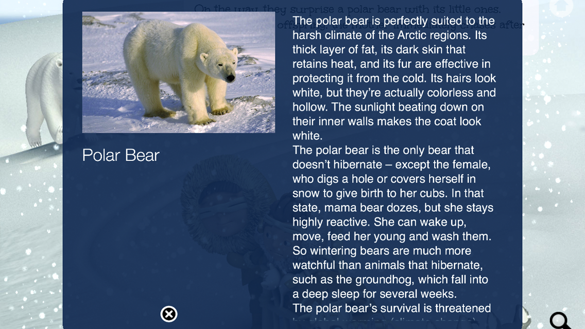 Scott's Polar Trip - screenshot