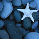 Touch Blue Stones n Starfish logo