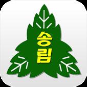 인천송림초등학교
