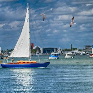 SAM_1276 Sailling On The ICW.jpg