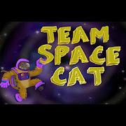 SpaceCat 2.0