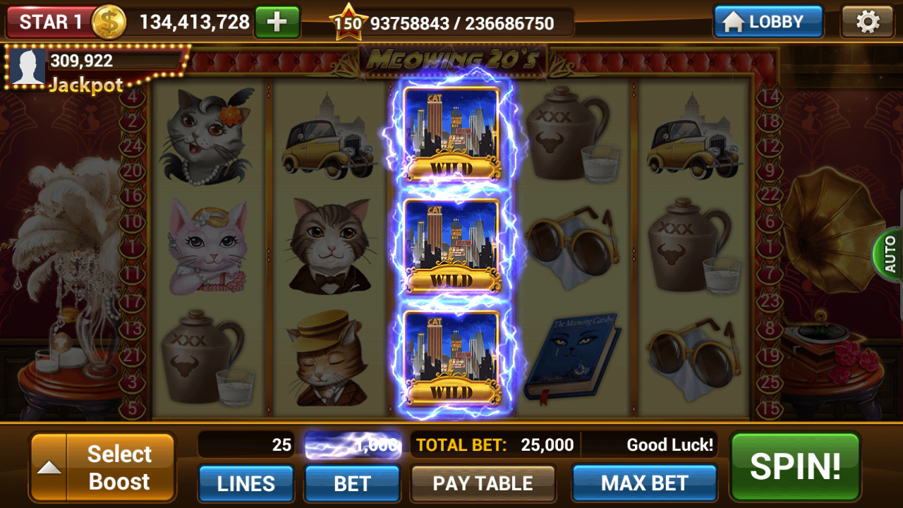 Slot Machines by IGG- screenshot