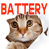 Cat Battery Saving