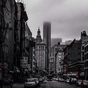 Street Pulse by Giovanna Arcadu - Instagram & Mobile iPhone (  )