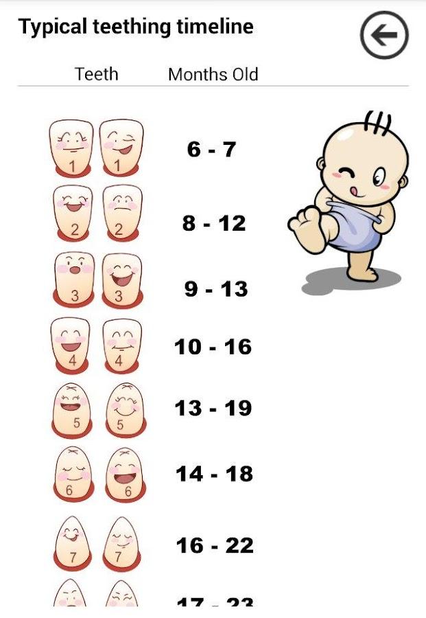 baby teething schedule