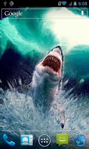 Shark in ice shards LWP