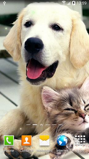 Cat Live Wallpaper 1.0.8 screenshots 7