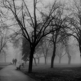 by Tatjana Koljensic - Black & White Landscapes