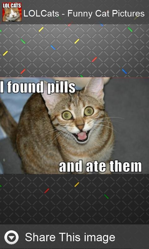 LOLCats - Funny cats pictures - screenshot