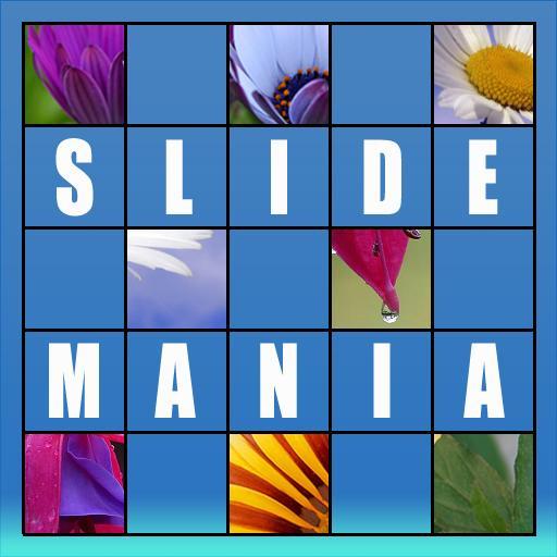 Slide Mania