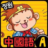 [장원] 중국어 단어카드 (A)