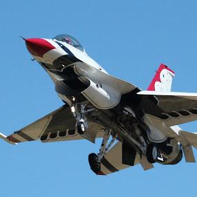 Thunderbird 8 by Karin Bennett - Transportation Airplanes