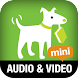 Add Audio and Video: TmMM