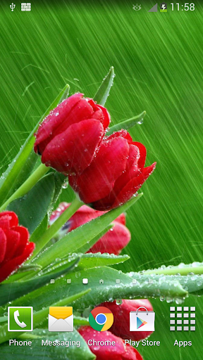 Rain Rose Live Wallpaper  screenshots 4