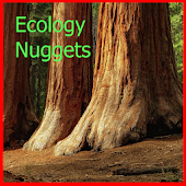 Ecology Nuggets