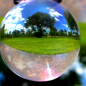 In the Park by Elfie Back - Artistic Objects Glass ( orb, glass, sphere, artistic objects,  )