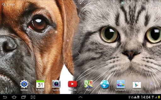 Cat Live Wallpaper 1.0.8 screenshots 15