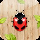 TouchCatch the ladybug! icon