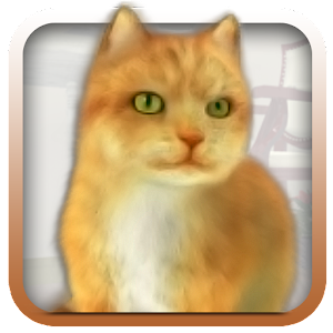 Talking Lovely Cat for PC and MAC