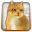 Talking Lovely Cat 1.4 APK for Android