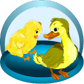 Smarter Child - Duckling&Chick