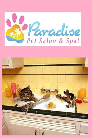 marketing and full service pet salon 72 reviews of the darling dog pet salon we love and family owned & operated full service an integrated sales & marketing process that.