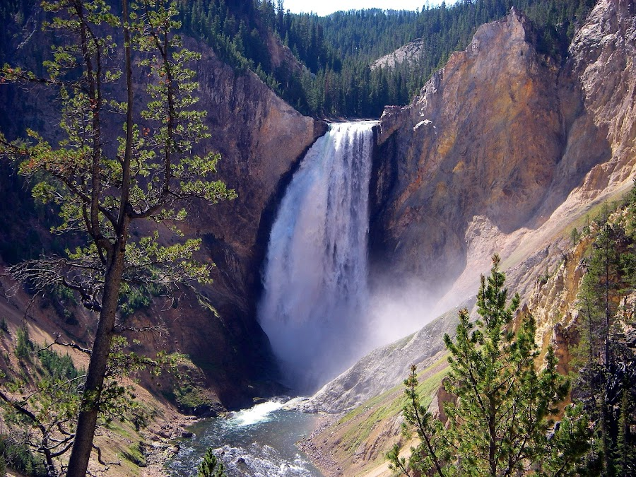 Lower Falls of the Yellowstone by Terry Niec - Landscapes Waterscapes ( yellowstone, wyoming, falls, yellowstone national park, lower falls,  )