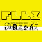 Radio FLEX FM icon
