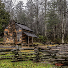 Cabin in the Woods by Tony Cox - Buildings & Architecture Public & Historical (  )