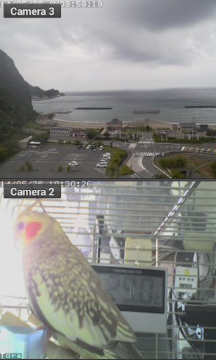 Viewer for VPON IP cameras