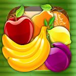 Fruit Mixer