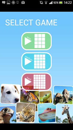 【免費解謎App】Kids Animal Pairs-APP點子