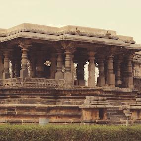 Halebidu  by Nithesh Panikkassery - Buildings & Architecture Public & Historical ( indian temple, halebidu temple, shiva temple )