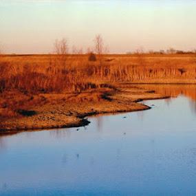 Just a day at the lake by Amanda Skipworth - Nature Up Close Water (  )