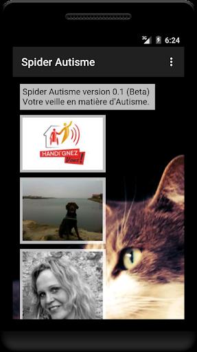 Spider Autisme