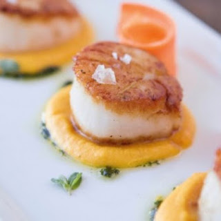 Scallops With Carrot Cream And Marjoram.