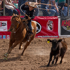 Tucson Rodeo 90th Anniverssary by Jeffrey Hechter - Sports & Fitness Rodeo/Bull Riding