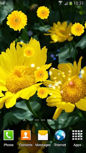Sunflower S5 Live Wallpaper