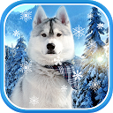 Cute Winter Wallpaper APK