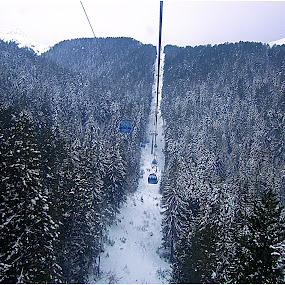 Bansko ski  by Sakis Prodigy - Landscapes Forests ( ski, bansko, snow, trees, forest, bulgaria )