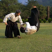 Aikido Windance Dojo Index
