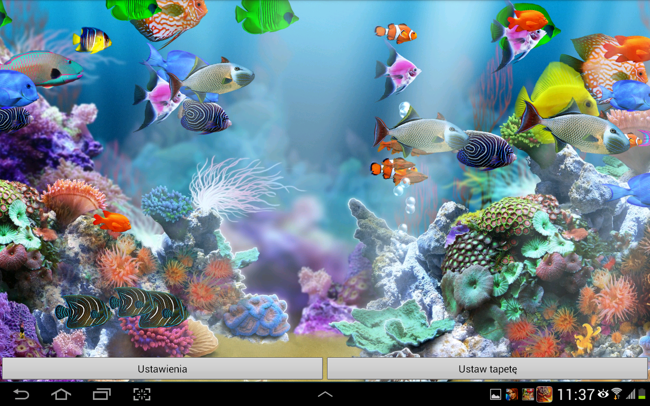 Fish aquarium live wallpaper - Aquarium Live Wallpaper Hd Screenshot