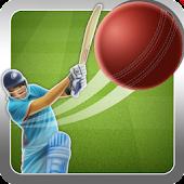 Super Cricket 2015