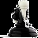 chess express